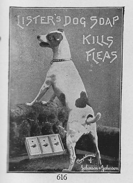 Ad for Lister's Dog Soap, 1914