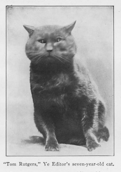 Another innovative first:  we apparently created the first published cat meme, courtesy of Fred Kilmer and his cat, Tom Rutgers.