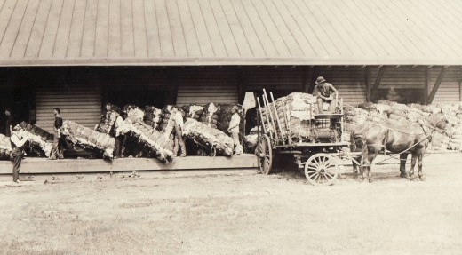 Johnson & Johnson cotton storage shed, from our archives.