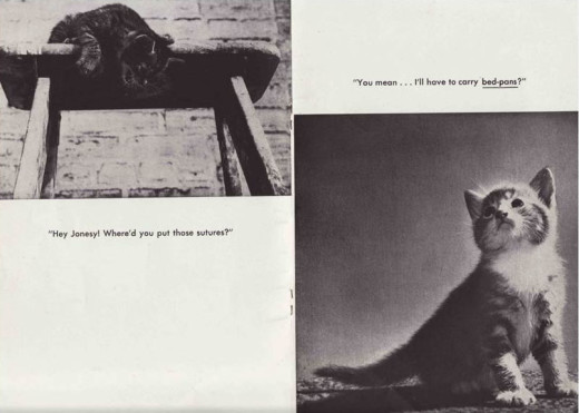 Johnson & Johnson: putting cat pictures in our publications. For more than a century.